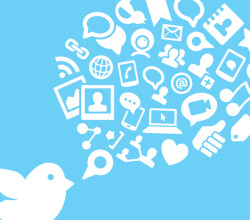 Corso online di Twitter Management 1